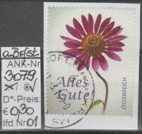 """20.2.2013 - SM """"Glückwunschmarke - Sonnenhut""""  - O Gestempelt Auf Briefstück - Siehe Scan  (3079o 01-03 ABs) - 1945-.... 2. Republik"""