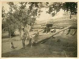 150519B - PHOTO GUERRE 1914 18 MILITARIA - 02 CONDE SUR AISNE Abri Des GBD - Chien Loup - France