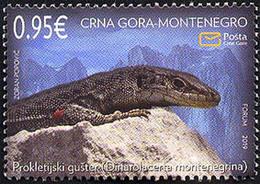 2019 Fauna, Montenegro, MNH - Montenegro