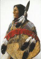 Indien - High Plains Sentinel - Illustration De Mark Rohrig - Galerie Inipi - Carte Non Circulée N° 809 - Native Americans