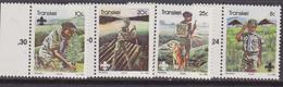 Transkei 1982 Scout Set MNH - Transkei