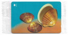 Oman - Sea Shells - Callista Erycina - 52OMNH - 2001, 250.000ex, NSB - Oman