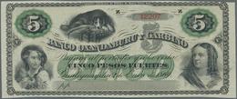 Argentina / Argentinien: BANCO OXANDABURU Y GARBINO Pair With 5 Pesos Fuertes 1869 Remainder P.S1783 - Argentina