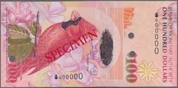 Bermuda: 100 Dollars 2009 SPECIMEN, P.62s In UNC Condition - Bermudas