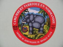 Etiquette Camembert - L'Eléphant - Fromagerie Gillot à Saint-Hilaire De Briouze 61C Normandie - Orne  A Voir ! - Fromage
