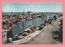 Margherita Di Savoia - Porto Canale - Foggia