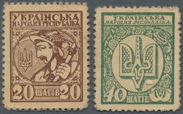 Ukraina / Ukraine: Set With 20 And 40 Shahiv Stamp Money Issue ND(1918), P.8, 10, Both With Lightly - Ukraine