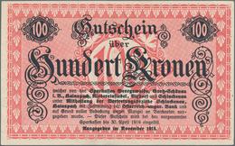 Czechoslovakia / Tschechoslowakei: Collectors Album With 131 Pcs. Notgeld 1848-50 And 1914-22, POW C - Czechoslovakia