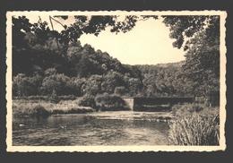 Neupont S/Lesse - Le Pont Du Ry Des Glands - éd. / Pub. Hôtel Du Ry Des Glands - Wellin