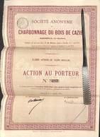 Charbonnage Du Bois De Cazier (1874) - Action Au Porteur Avec Coupons Marcinelle - Mines