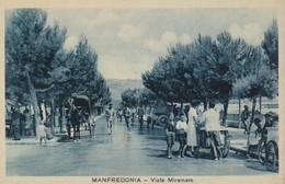 MANFREDONIA - VIALE MIRAMARE - Manfredonia