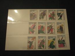 NEVIS - 1995 UCCELLI 12 VALORI - NUOVI (++) - St.Kitts E Nevis ( 1983-...)