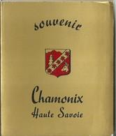 """3577 """" SOUVENIR CHAMONIX HAUTE SAVOIE-12 VEDUTE A COLORI """" ORIGINALE - Dépliants Turistici"""