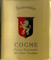 """3578 """" SOUVENIR COGNE-PARCO NAZIONALE DEL GRAN PARADISO -12 VEDUTE A COLORI """" ORIGINALE - Dépliants Turistici"""