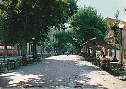 POSTAL B02156: Manresa (Barcelona). Passeig De Pere III. - Cartes Postales