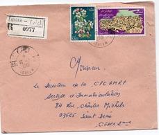LSC 1981 - Recommandé Et Cachet IGHRAM  & Timbres - Algeria (1962-...)