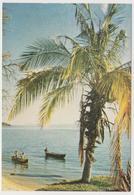 1630/ NKUDZI BAY, Lake Malawi. - Non écrite. Unused. No Escrita. Non Scritta. Ungelaufen. - Malawi