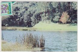 1633/ ZOMBA PLATEAU SCENARY, Malawi. - Sent To Spain En 1982 (with Stamps). Circulée En Espagne En 1982 (avec Timbres). - Malawi