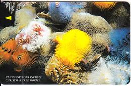 MALAYSIA(GPT) - Underwater/Christmas Tree Worms, CN :19MTRC(normal 0), Used - Malaysia