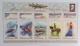 1999 North Korea Stamps Darwin And Evolutionism MS - Nature