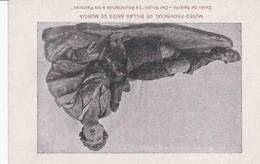 POSTAL B4701: BELEN DE SALZILLO: LA ANUNCIACION A LOS PASTORES - Cartes Postales