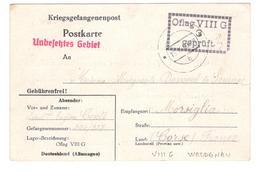 17351 - OFLAG  VIII G WELGDNAU - Marcophilie (Lettres)