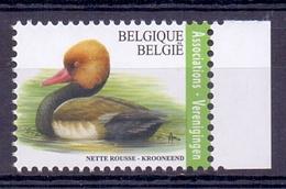 Belgie - 2018 - OBP - ** Krooneend **  ** Papier Gegomd Wit FSC - Bélgica