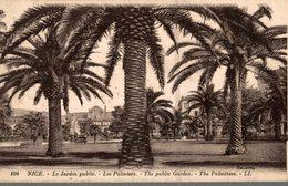 06 NICE LE JARDIN PUBLIC  LES PALMIERS - Plazas