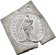 Medaillen Deutschland: Hamburg: Klippenförmige Zinnmedaille O.J.(1906), Auf Den Brand Der St.Michael - Germany