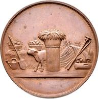 Medaillen Deutschland: Regensburg: Bronzemedaille 1883, Auf Die 25. Wanderversammlung Bayrischer Lan - Germany