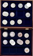 Kanada: Silberanleger Aufgepasst: 25 X 1 OZ Maple Leaf, Diverse Jahrgänge Von 1989 - 2006, Teils Dop - Canada