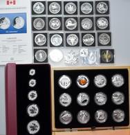 Kanada: Lot Diverse Silber Gedenkmünzen Aus Kanada, Dabei: Serie O Canada 2013 Mit 12 X 10 Dollars G - Canada