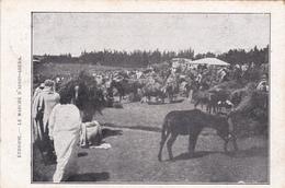 CPA Ethiopie - Le Marché D'Addis-Abeba  - 1925 - Ethiopia