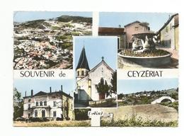 SOUVENIR DE Ceyzeriat  MULTIVUES - Autres Communes