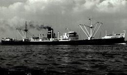 INTEGRITY +- 15  * 9 CM BARCO BOAT Voilier - Schiffe