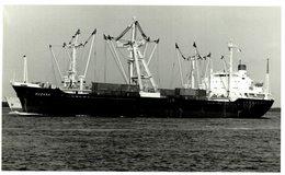 SUZANA +- 15  * 9 CM BARCO BOAT Voilier - Schiffe