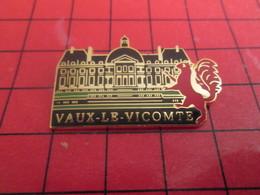 613f Pin's Pins / Beau Et Rare : Thème VILLES / CHATEAU DE VAUX LE VICOMTE ECUREUIL ROUGE Pas Caisse D'Epargne - Villes