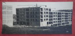 MONTPELLIER - MAS DREVON - Construction Des Bâtiments 1964 - 2 Photos  ( 38 X 17 Cm ) - Montpellier