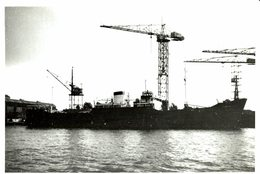 Farrapo +-  12 * 9 CM BARCO BOAT Voilier - Schiffe