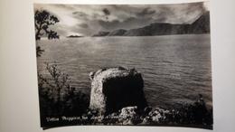 Vettica Maggiore (Napoli) - Tra Amalfi E Positano - Viaggiata - 1959 - Altre Città