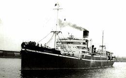 HARWARRI +- 15  * 9 CM BARCO BOAT Voilier - Barcos