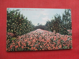 Fruit & Flowers In Winter M. Rieder Publisher Los Angeles Ca.   Ref 3358 - Flowers