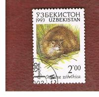 UZBEKISTAN   - SG 9  - 1993 ANIMALS: ONDATRA ZIBETHICA  -   USED - Uzbekistan