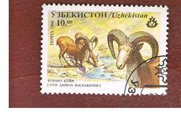 UZBEKISTAN   - SG 108   - 1996 ANIMALS: BUKHARA URIAL   -   USED - Uzbekistan