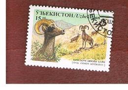 UZBEKISTAN   - SG 110   - 1996 ANIMALS: SEVERTZOV ARGALI   -   USED - Uzbekistan