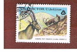 UZBEKISTAN   - SG 113   - 1996 ANIMALS: CAPRA SIBIRICA   -   USED - Uzbekistan