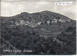 CAMAIORE - GOMBITELLI - Lucca