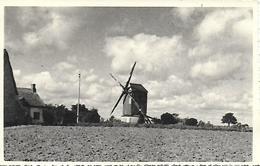 SANCHEVILLE . Rare Photo Inédite Originale Du Moulin Du Paradis  Anciens Années 40  Très Bon état 2 Scans - France
