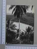 SAINT THOMAS E PRINCIPE - PRAIA DAS SETE ONDAS -  ILHA DE STº TOMÉ -   2 SCANS  - (Nº28800) - Sao Tome And Principe