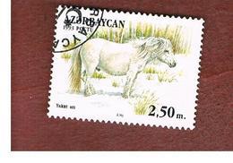 AZERBAIJAN   - SG 97 -  1993 HORSES: YAKUTIAN HORSE  -   USED - Azerbaijan